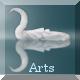 Study Arts videos